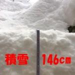 初めて見る大雪